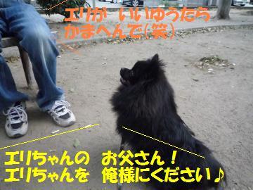 0822-9_convert_20080822195008.jpg