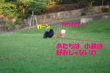 0824-29_convert_20080824235905.jpg