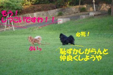 0824-30_convert_20080825000106.jpg