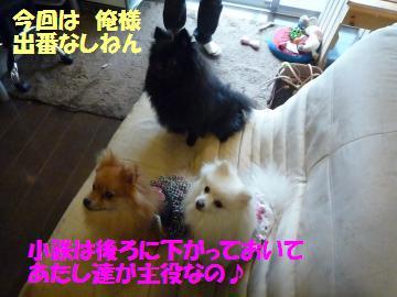 0903-04_convert_20080904153830.jpg
