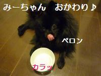 0908-16_convert_20080910005228.jpg