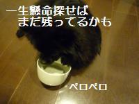 0908-18_convert_20080910005305.jpg