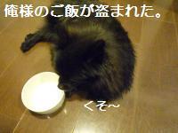 0908-22_convert_20080910005519.jpg