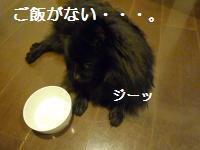 0908-24_convert_20080910005631.jpg