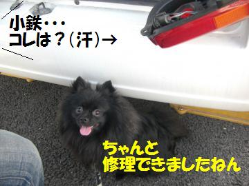 CIMG0002_convert_20080815002922.jpg