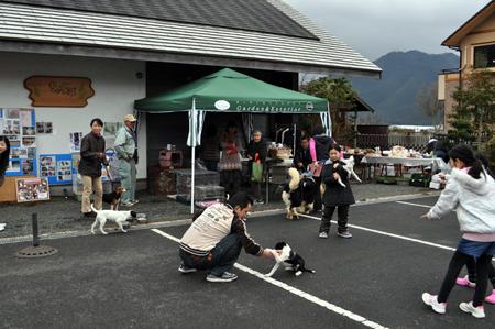 譲渡会2012.3.18