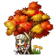 8-28 紅葉木