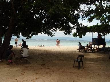 サピ島木陰から海