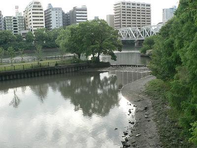 大川貯木場跡の干潟01
