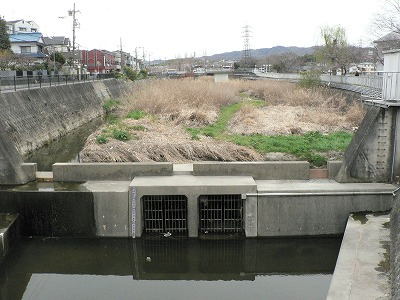 川勝町下流からみる。下は排水口です