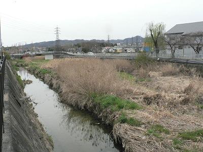 川勝町下流右岸からみる