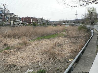 川勝町下流左岸からみる