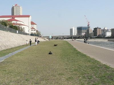 武庫川河川敷で計測