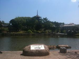 sarusawa0716_convert_20110716111126.jpg