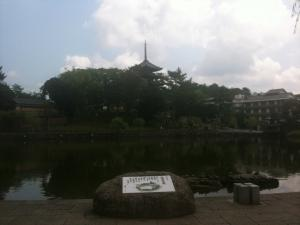 sarusawa0723_convert_20110723112243.jpg