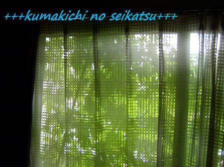 SANY0415_convert_20080720234107.jpg