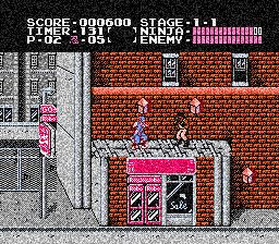 Ninja Ryukenden (3