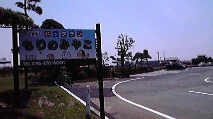 morinomiyako1