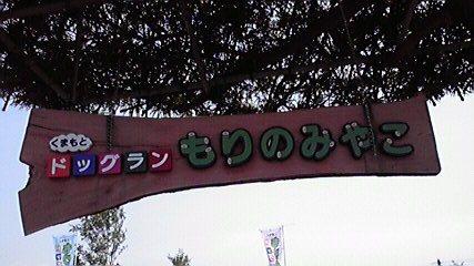 morinomiyako2