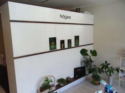 nagee31