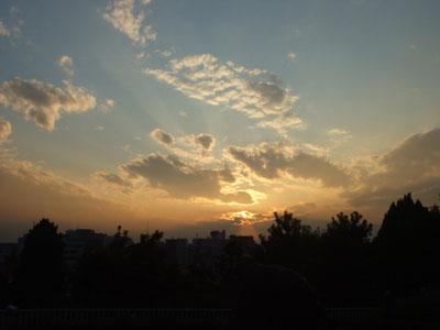 秋の夕方 西郷山公園