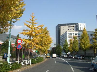 NHK通り