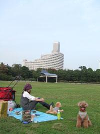 貸切状態の潮風公園