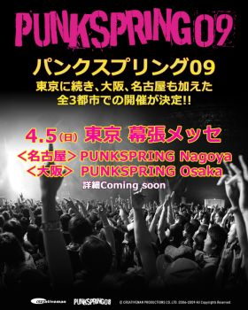 punkspring09_top1.jpg