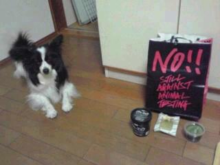動物実験反対。