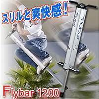 懐かしのホッピングが進化して帰ってきた!フライバー(Flybar)1200