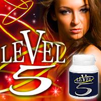 LEVEL5(レヴェル5)