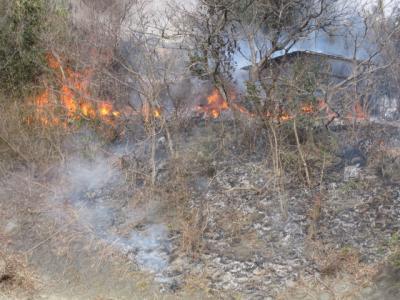 焦げた土手の斜面と、燃える土手