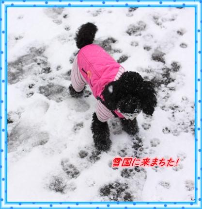 雪国 014