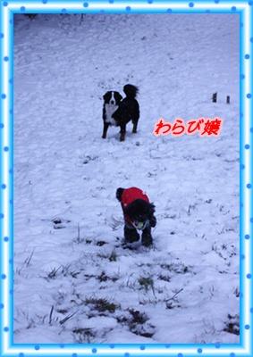 雪国 045