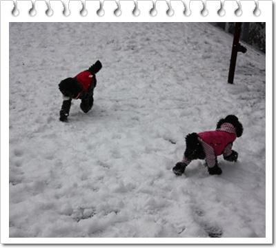 雪国 153