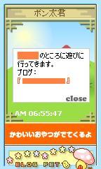 blogpet.jpg