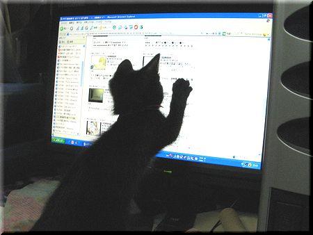 PCマウス捕まえた!