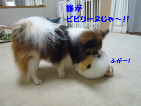 2012214-6.png