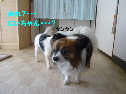 2012216-10.png