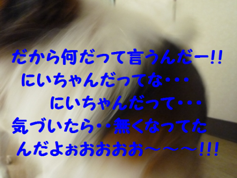 2012216-14.png