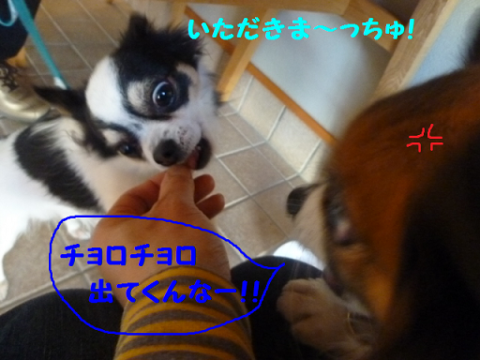 2012216-19.png