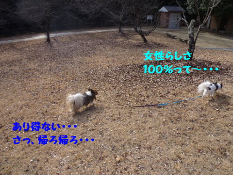 2012228-2.png