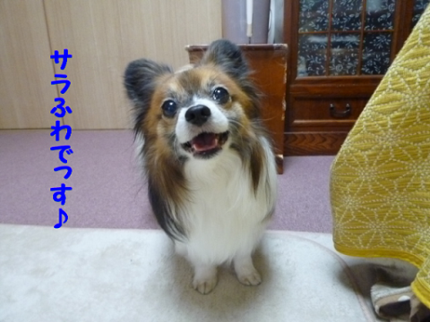 2012315-1.png