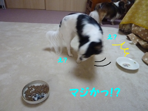2012326-11.png