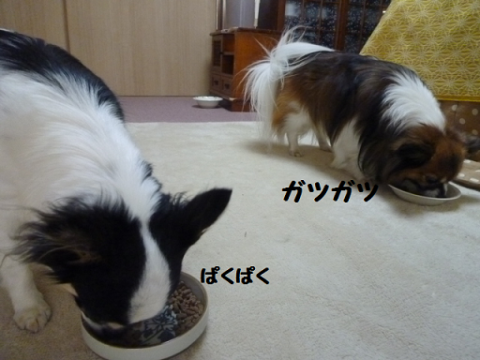 2012326-8.png