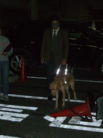 081017盲導犬 001