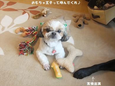 おもちゃに囲まれてるとなんか安心すんねんな~