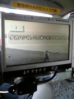 DVC00048_M.jpg