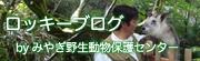 ロッキーブログ byみやぎ野生動物保護センター