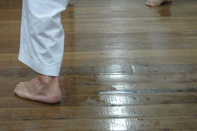 okinawa karate kyudokan20110729 001